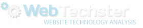 WebsiteTech Logo